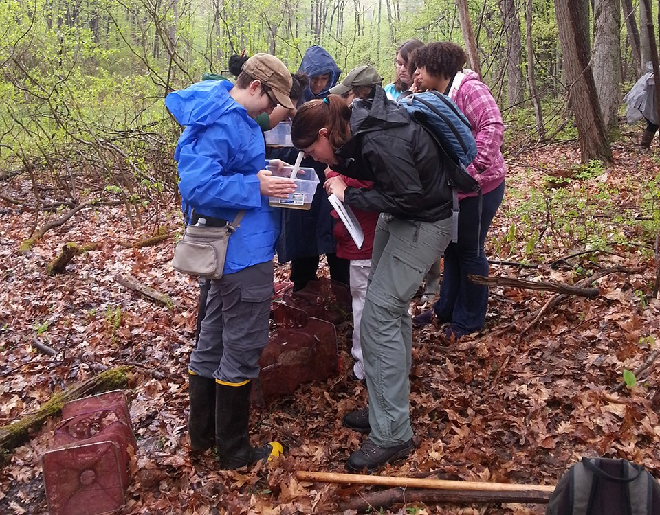 Fish Lake preserve ideal for inspiring faculty and student research