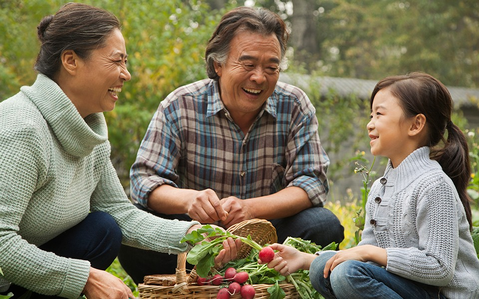 An Asian-American family picks fresh vegetables from a garden.