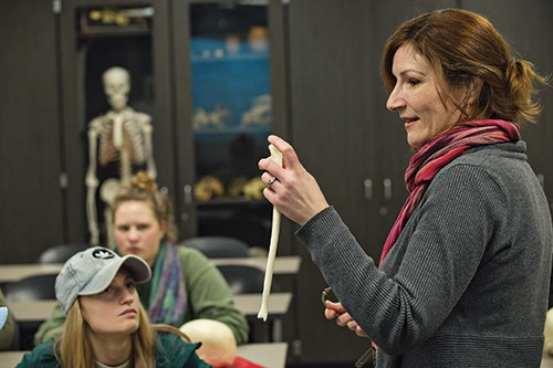 Megan Moore holds a cast of a human bone in osteology class.