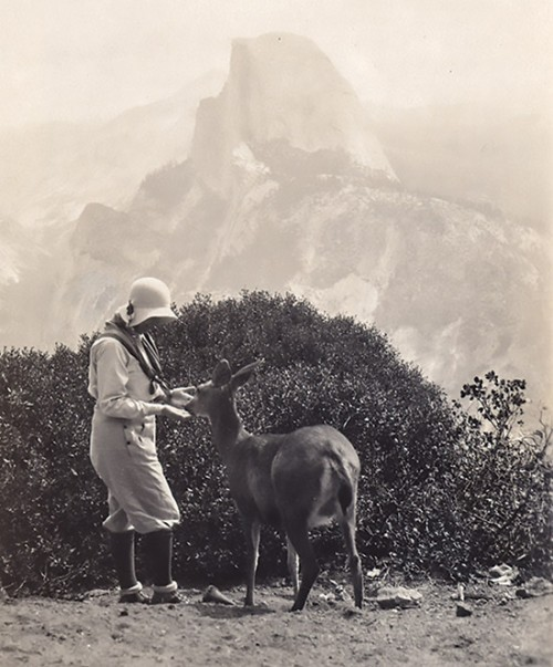 Meta Hellwig with a deer at Half Dome.